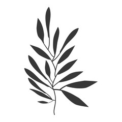 gray scale olive with more leaves vector illustration