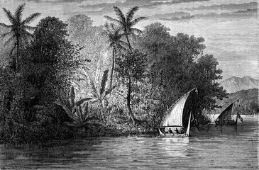 A view Celebes, vintage engraving.