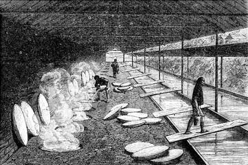 Salt Well, Evaporation, vintage engraving.