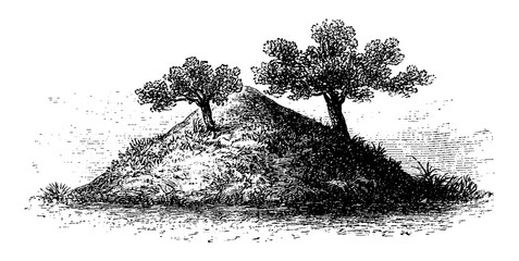 Termite Mound in Southern Africa, vintage engraving