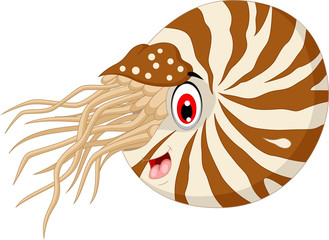 Nautilus Cartoon for you design
