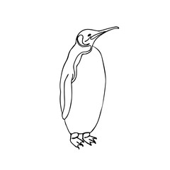 Vector sketch illustration emperor penguin.