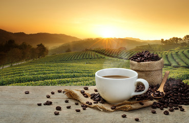 Hot Coffee cup with Coffee beans on the wooden table and the plantations background