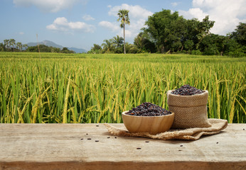 Rice berry in bowl and sack on wooden table with the rice field