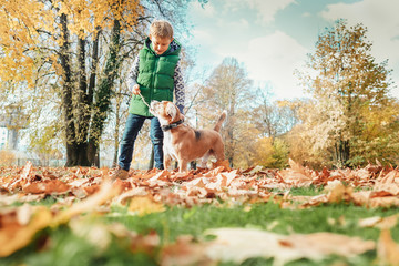 Boy playing with dog in autumn park