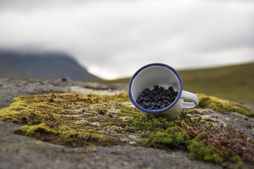 Delicious blueberries displayed in cup picked from rich Swedish grounds, nature background