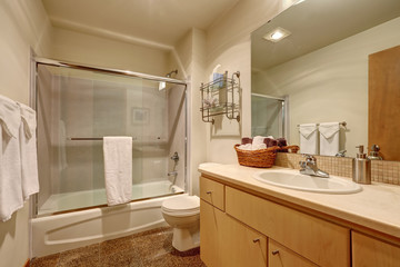 Traditional bathroom interior in American house