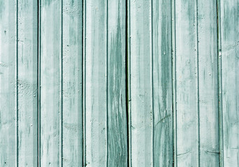 Cyan color old wooden fence texture.