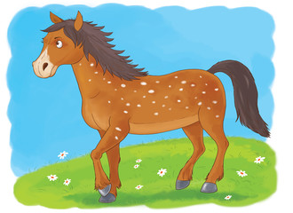 At the farm. Cute domestic animals. Illustration of beautiful horse running in the meadow. Illustration for children. Coloring book. Coloring page. Funny cartoon characters.