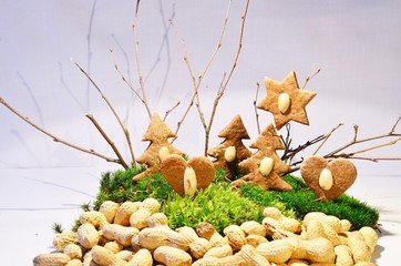 The gingerbread forest  /  The gingerbread forest built on the green moss with peanuts.