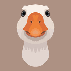 Vector goose face farm animal zoo icon head portrait