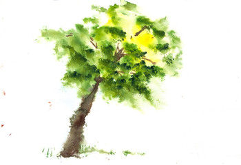 Green tree on white, watercolor hand painted