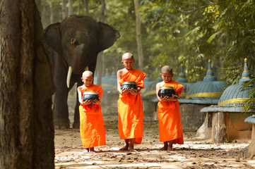 Elephant and Monk vintage style,Surin Thailand
