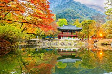 Wall Mural - Baekyangsa Temple in autumn,Naejangsan Park in korea.