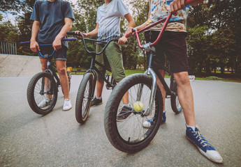 Company of young people on BMX