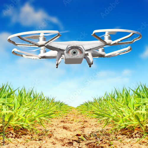 Drone flying over plantation  New tool for farmers use