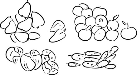 sketch of vegetables and fruits