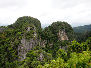 Scenic landscape wild nature tropical rocky mountains overgrown dense green jungle tree