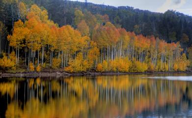 Kolob Reservoir Autumn Reflection