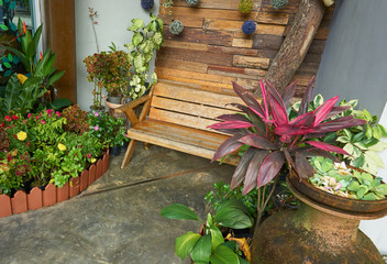 Wooden bench at indoor garden. Wooden bench is decorated with garden tree.