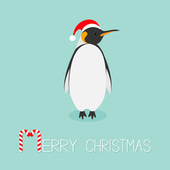 King Penguin Santa red hat. Emperor Aptenodytes Patagonicus Cute cartoon character. Flat design Winter antarctica bluebackground Merry Christmas Candy cane text. Greeting card.