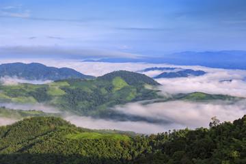 Mountain after raining with the fog.Doi Pha Mee, Chiang Rai, Tha