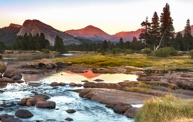 Tuolumne Meadow Yosemite Wall mural