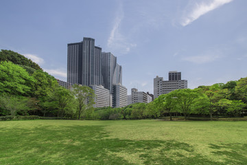 modern city viewed form a park, composite photograph of fictional city