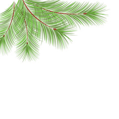 Fir tree branches frame for Christmas decoration