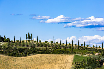 Beautiful landscape in Tuscany