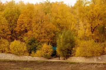 Autumn park with a blue bridge in the distance