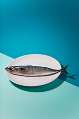 Fish on a plate on blue background