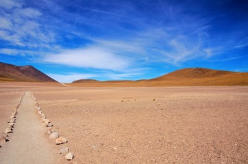 Surrounding are of the Laguna Altiplanica which is a high plateu Lagoon in the area of San Pedro de Atacama in Chile, South America Wall mural