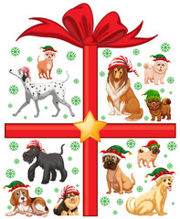 Christmas theme with cute dogs and present box