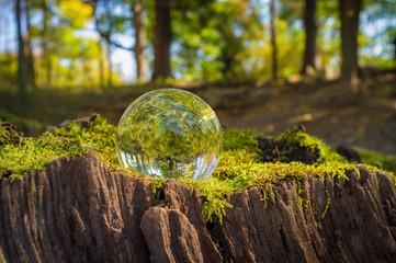 Crystal Ball Nature