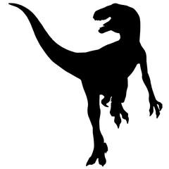 Black vector illustration silhouette of velociraptor