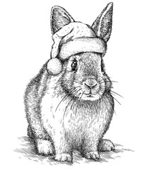 Aluminium Prints Christmas Rabbit, black and white engrave. Christmas hat.