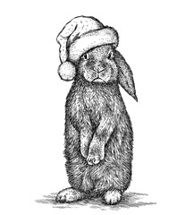 Foto auf Acrylglas Weihnachten Rabbit, black and white engrave. Christmas hat.