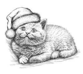Aluminium Prints Christmas Cat, black and white engrave. Christmas hat.