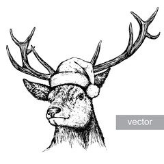 deer, black and white engrave. Christmas hat. Vector