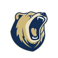Bear head mascot