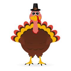 Turkey in hat on Thanksgiving Da