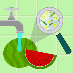 Contaminated watermelon being cleaned and washed in a kitchen. Microorganisms, virus and bacteria in the vegetable enlarged by a magnifying glass. Running tap water.