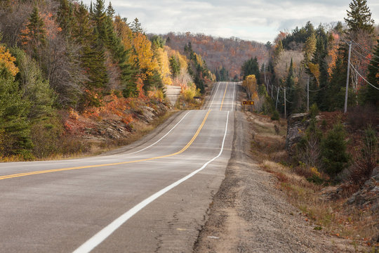 Straight hilly tar road in Algonquin Park in Ontario during full