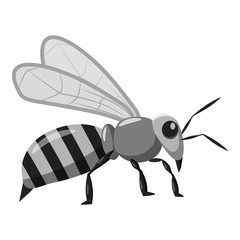 Bee icon. Gray monochrome illustration of bee vector icon for web