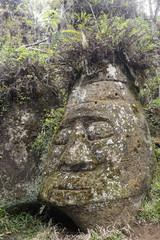 Carved Stone Face, Floreanna Island, Galapagos