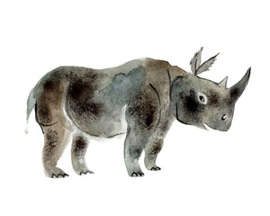 Gray rhinoceros isolated on a white background, watercolor