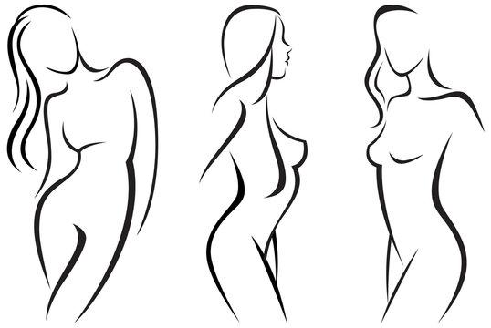Vector set stylized beautiful women silhouettes