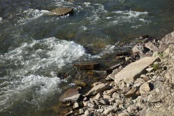 River Shopurka. The mountain river in the Carpathian region. Transcarpathia