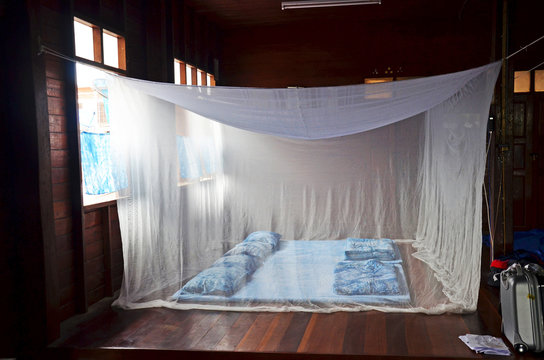 Bedroom and indigo sleeping set old style with bed nets in house